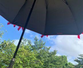 parasol2.jpeg
