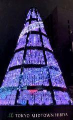 starlighttree2 .JPG