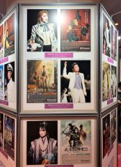 tokyotakarazukatheater4.jpeg
